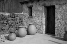 photo noir et blanc du jardin méditéranéen à quimper