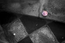photo-d'art-Quimper
